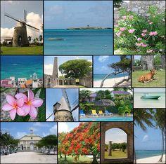 Guadeloupe, Marie Galante ~ fait 10.2004 ♥