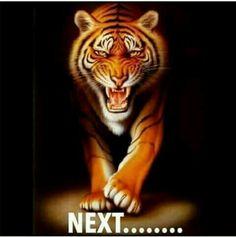 Fierce stalking bengal tiger, big cats, wild animals art print by… Fierce Animals, Zoo Animals, Wild Animals, Big Cats Art, Cat Art, My Canvas, Canvas Prints, Tiger Poster, Vintage Art Prints