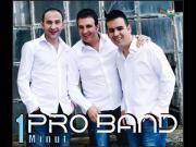 Pro Band - Puthjet tona