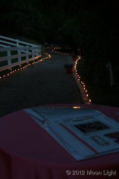 wedding walkway lights Moon Light Holiday Lighting Wedding Walkway, Walkway Lights, Holiday Lights, Moonlight, Fair Grounds, Lighting, Fun, Travel, Viajes