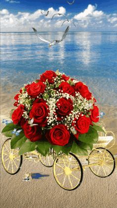 HOLA QUE TAL SU DIA ? ESPERO QUE ESTEN MUY BIEN Y FELICES DIOS L@S BENDIGA SIEMPRE - Han Cao - Google+ Beautiful Love Pictures, Romantic Pictures, Beautiful Gif, Flowers Gif, Beautiful Rose Flowers, Love Rose, Easter Flower Arrangements, Easter Flowers, Floral Arrangements