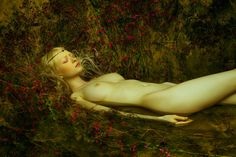 The Faerie Realm : Photo