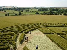 Impossible world: Artificial crop circles