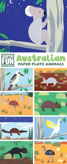 Australian animal paper plate crafts – 13 Aussie animal crafts you can make from paper plates using our printable templates. Also includes printable animal facts and instructions #australiananimals #paperplatecrafts #paperplates #koala #kookaburra #wombat #bilby #cockatoo #printablecrafts #kidsactivities #funkidscrafts #craftsforkids #papercrafts #marsupials #thecrafttrain #superfunprintables Australian Animals, Printable Animals, Printable Crafts, Paper Plate Crafts, Paper Plates, Paper Plate Animals, Animal Facts, Wombat