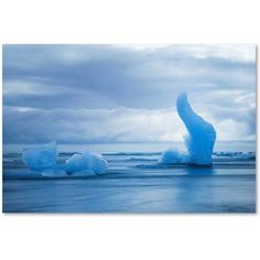 Trademark Fine Art 'Flying Blue' Canvas Art by Philippe Sainte-Laudy, Size: 12 x 19, Multicolor