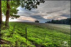 Trail of Tears - David Crockett State Park, TN