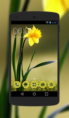 A single yellow flower resting on dark green leaves adorns the screen of this nature inspired Android theme. To add more excitement, the design also uses flowery shapes for the custom icons. Android Icons, Android Theme, Custom Icons, Yellow Flowers, Baby Hats, Beautiful Flowers, Nature, Free, Beauty