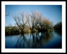 Wallace Polsom, November Light (11 November 2016), instant photo taken with a vintage Polaroid 430 Automatic Land Camera and Fuji FP-100C peel-apart film. Photo was taken with the 430's lighten/darken control set right in the middle.