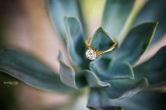 #weddingphotography #indianweddingphotographer #weddingring #bling #solitaire #weddingjewellery