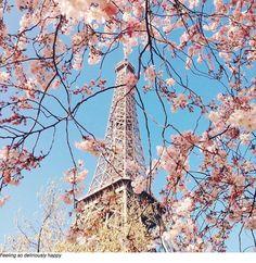 Paris /  via Carin Olsson