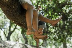 tree climbers chillin