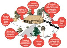 Create Defensible Space