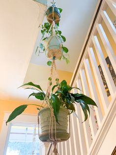 Jute Triple Decker Macrame Plant Hanger: Community Do you have a stairwell that needs some plant fri Hang Plants From Ceiling, Window Shelf For Plants, Hanging Plants, Wall Plant Hanger, Macrame Plant Hangers, Diy Hanging Shelves, Plant Shelves, House Plants Decor, Plant Decor