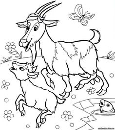 Animals Farm Animal Coloring Pages, Colouring Pages, Coloring Pages For Kids, Coloring Books, Cartoon Drawings, Drawing Sketches, Emotional Drawings, Drawings Pinterest, Drawing Lessons For Kids