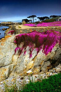 Lover's Point, Pacific Grove, California, USA
