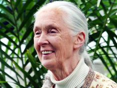 As the world has been up in flames arguing every possible side of this Harambe debate, Jane Goodall, famed primatologist sent a very simple and precise email to the director of the Cincinnati Zoo in response.