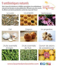 La Santé dans l'Assiette: Fiche pratique - 9 antibiotiques naturels