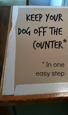 Learn how to keep your dog off the kitchen counters in one easy step | Make Something Daily