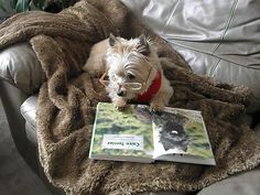 Miss Beasley says there's nothing like curling up with a good book!