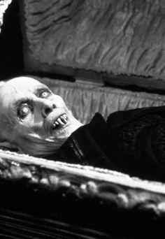 Max Schreck in Nosferatu still the scariest on screen vampire ever, looks more like salems lot. Arte Horror, Horror Art, Dracula, Arte Lowbrow, Salem Lot, Coppola, The Frankenstein, Vampires And Werewolves, Vintage Horror