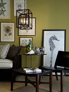 8 Best Olive Green Paint Walls Images Olive Green Walls