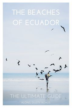 The Ultimate Guide to the Beaches of Ecuador