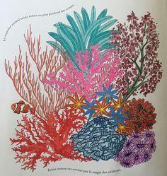 Visit The Post For More ColouringColoring BooksAnimal KingdomMartin