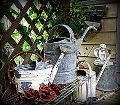 Organized Clutter - Garden Junk : Watering Can Collection