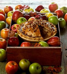 "Apple Pear Praline Pie | ""The key to this pie is the apples you use ..."
