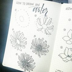 3,329 vind-ik-leuks, 31 reacties - Liz • Bullet Journal (@bonjournal_) op Instagram: 'On our flight home, I threw together a quick tutorial on how to draw an Aster, which I *think* is…'