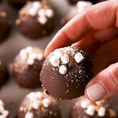 These easy edible-cookie-dough truffles are the perfect no-bake summer treat. Eggless, and using graham crackers instead of flour, they're both safe to eat and extremely delicious. Easy Cake Recipes, Candy Recipes, Easy Desserts, Sweet Recipes, Delicious Desserts, Dessert Recipes, Healthy Desserts, Oreo Cake Pops, Edible Cookies