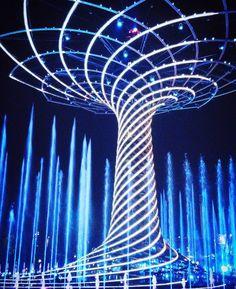 #Expo #ExpoMilano2015 #Expo2015 #Expo2015milano #alberodellavita #treeoflife #lakedistrict #Milano #igersmilano #ig_milano #vivomilano #milanodaclick #milanodavedere #bestoftheday #picoftheday #followme #architectureporn #instagood #instacool #vsco #vscocam #vscogood #colors #colorful #nature #natureporn #naturelovers #landscape #landscapelovers #lovers_nature by la_dandi