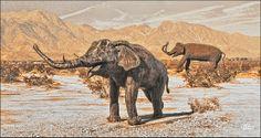 Elephants In Anza Borrego Desert Photograph by Douglas MooreZart   #photography #fineart #sculptures #desertsculptures #douglasmoorezart #elephants