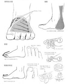 How to Draw Manga Vol. 42 Drawing Yaoi_decrypted / Foot 2