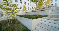 Concrete, grass, trees.