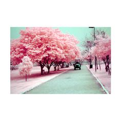 Butterflies and Tornados ❤ liked on Polyvore featuring backgrounds, pictures, photos, pink and pics