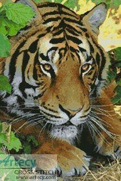 Bengal Tiger 3 cross stitch pattern.