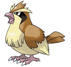 Die 47 Besten Bilder Von Pokémon Drawings Pokemon Pictures Und
