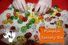 Pumpkin Sensory Bin - 3Dinosaurs.com