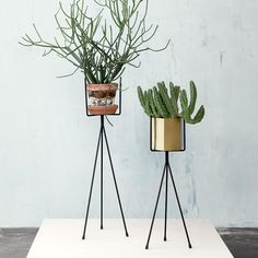 Hexagon Plant Pot & Stand by Ferm Living (Brass & Black)