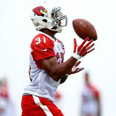 NFL rookie and former Panther David Johnson is fitting in quite well with his new team in Arizona.