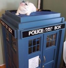 DIY Kitty TARDIS Playhouse For Cats Who Love The Doctor... @Wallace Krebs