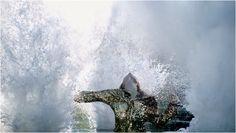 http://www.mvod.tv/home/314-fashion-film-the-lake-?33ef93356cdbd28c9207f5e6ddd1c594=7a6b8e621d9b96dd3a3b438c469b3b7c