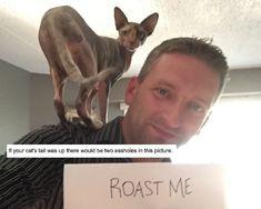 Images about roast me on pinterest roast me roasts and album