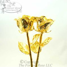 Two of our Famous Gold Dipped Roses!