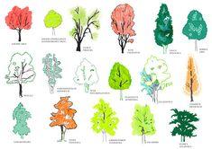 Bustler: Blackburn's Secret Landscape Garden by Studio Weave with MESH Partnership
