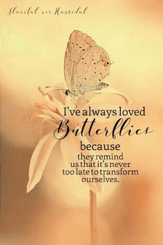 Trendy Quotes About Strength To Move On Mottos Wisdom Quotes, Me Quotes, Motivational Quotes, Inspirational Quotes, Vinyl Quotes, Wall Quotes, Butterfly Quotes, Butterfly Symbolism, Butterfly Meaning