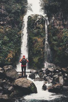 ikwt:Dawson Falls in Taranaki (lebackpacker) |instagram