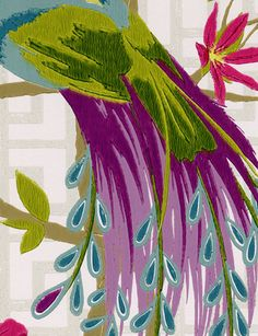 Get the look wallcoverings pinterest wallpaper - Nina campbell paradiso wallpaper ...