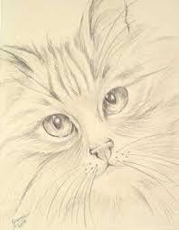 Image result for dibujos a lapiz gatos